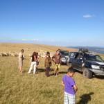 Renconte avec des bergers Roumains